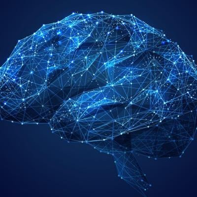 Abstract human brain with circuits