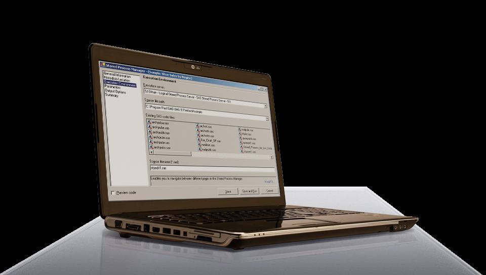 SAS Integration Technologies