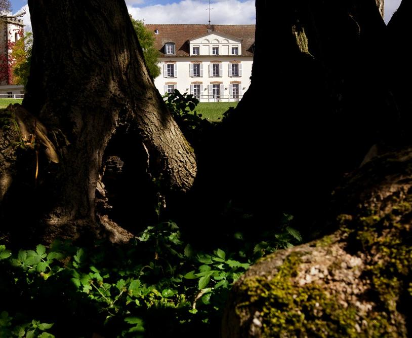 SAS France - Le Château