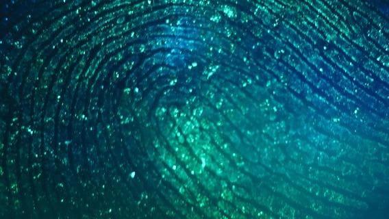 Bénéfique symbiose entre humains et intelligence artificielle