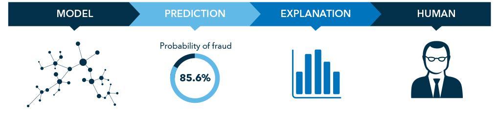 Fraud machine learning process