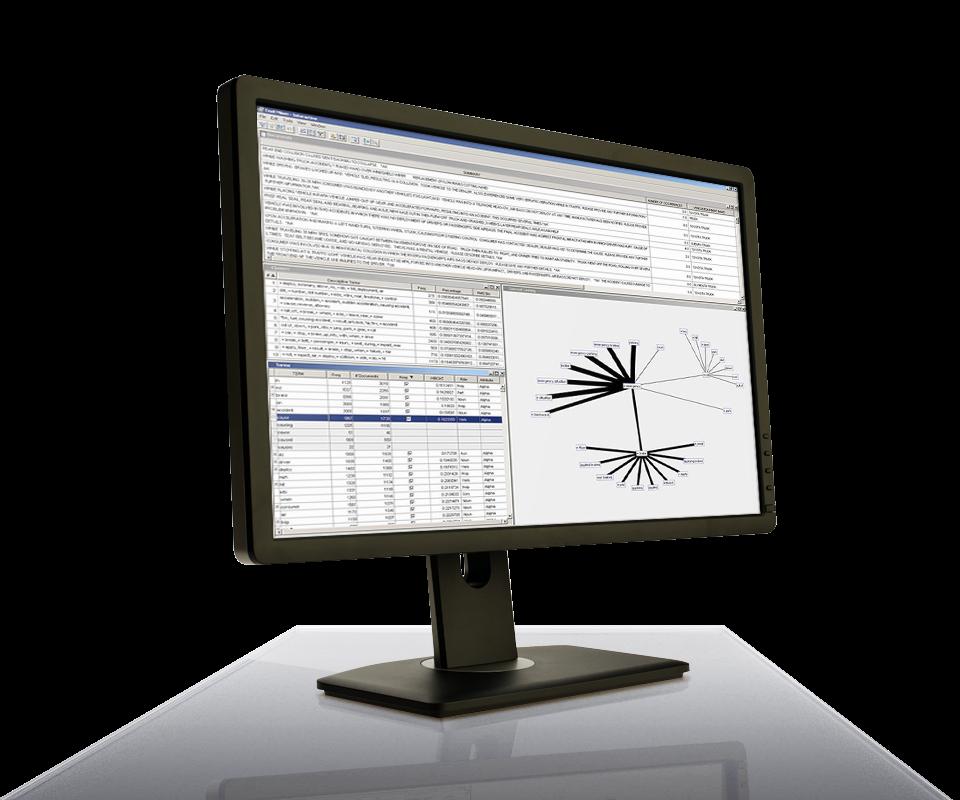 SAS Text Miner in esecuzione su monitor desktop