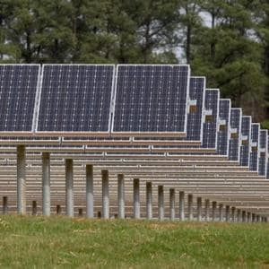 Solar panels at SAS' Solar Farm on the Cary, NC Headquarters.