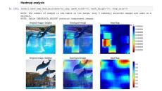 SAS Viya DLPyを用いた画像分類