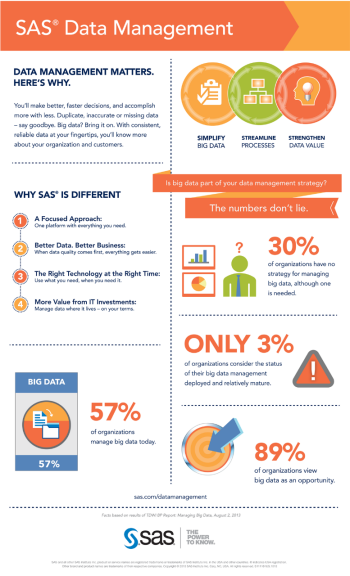 SAS Data Management Infographic