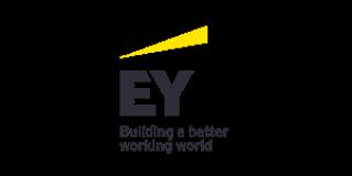 EYストラテジー・アンド・コンサルティング株式会社