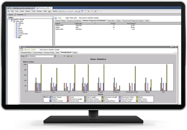 SAS Data Quality showing data profiling on desktop monitor