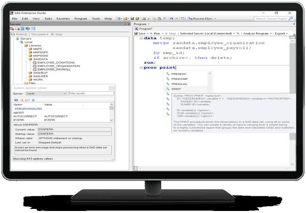 SAS Enterprise Guideの構文クエリ機能を使用している様子が表示されたデスクトップ・モニター