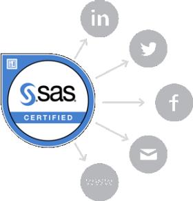 SAS Badges