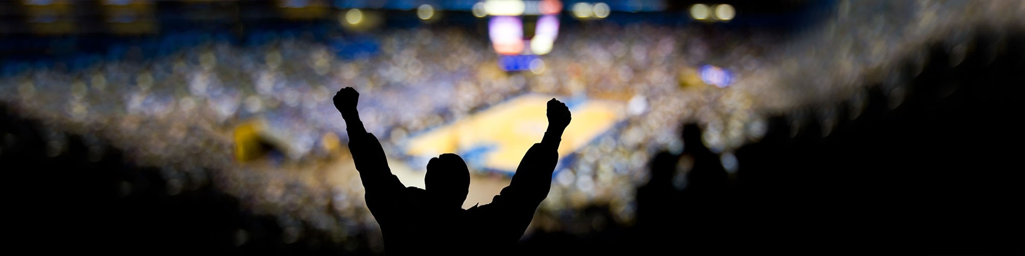 shadow of basketball fan pumping fist agains light of court