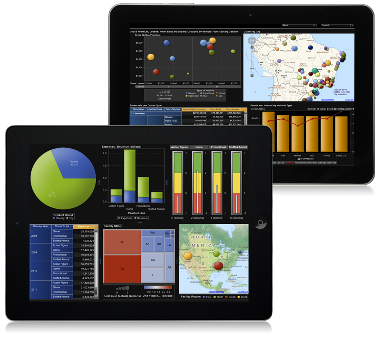 <p>Mobile Business Intelligence: SAS Visual Analytics<br> </p>