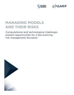 Managing Models and Their Risks
