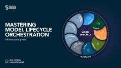 Mastering Model Lifecycle Orchestration