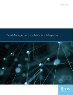 Data Management for Artificial Intelligence