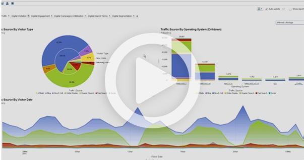 Visual Analytics Reporting Demo