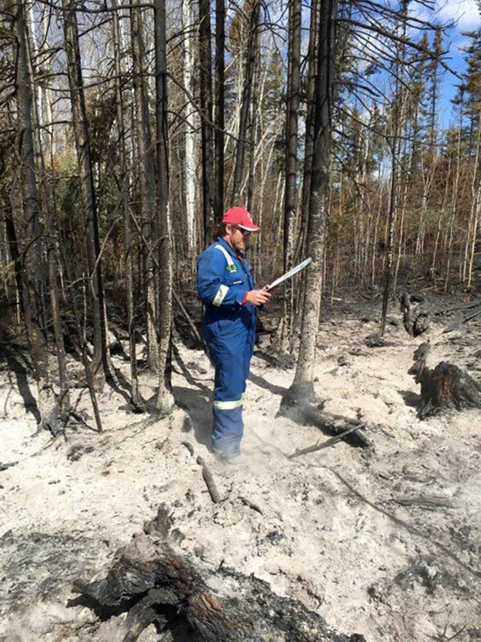 forensic chemist investigating forest fire