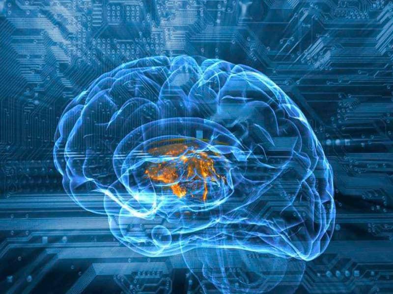 Human brain and circuit board, illustration
