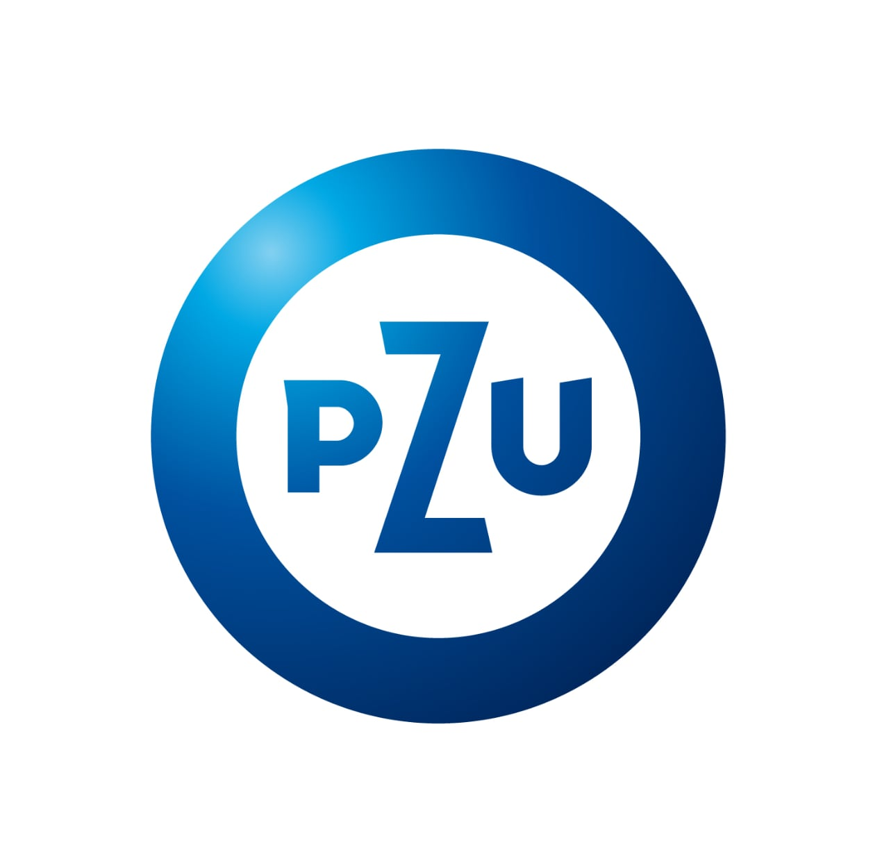 SAS Enterprise Guide w PZU SA