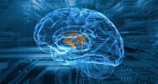Искусственный интеллект: где реальность, а где хайп?