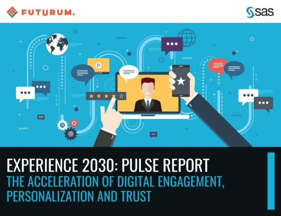 Experience 2030: Pulse Report
