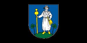 Velky Saris Logo