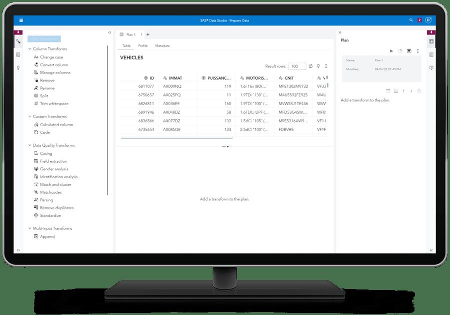 SAS Data Management showing data remediation summary on desktop monitor