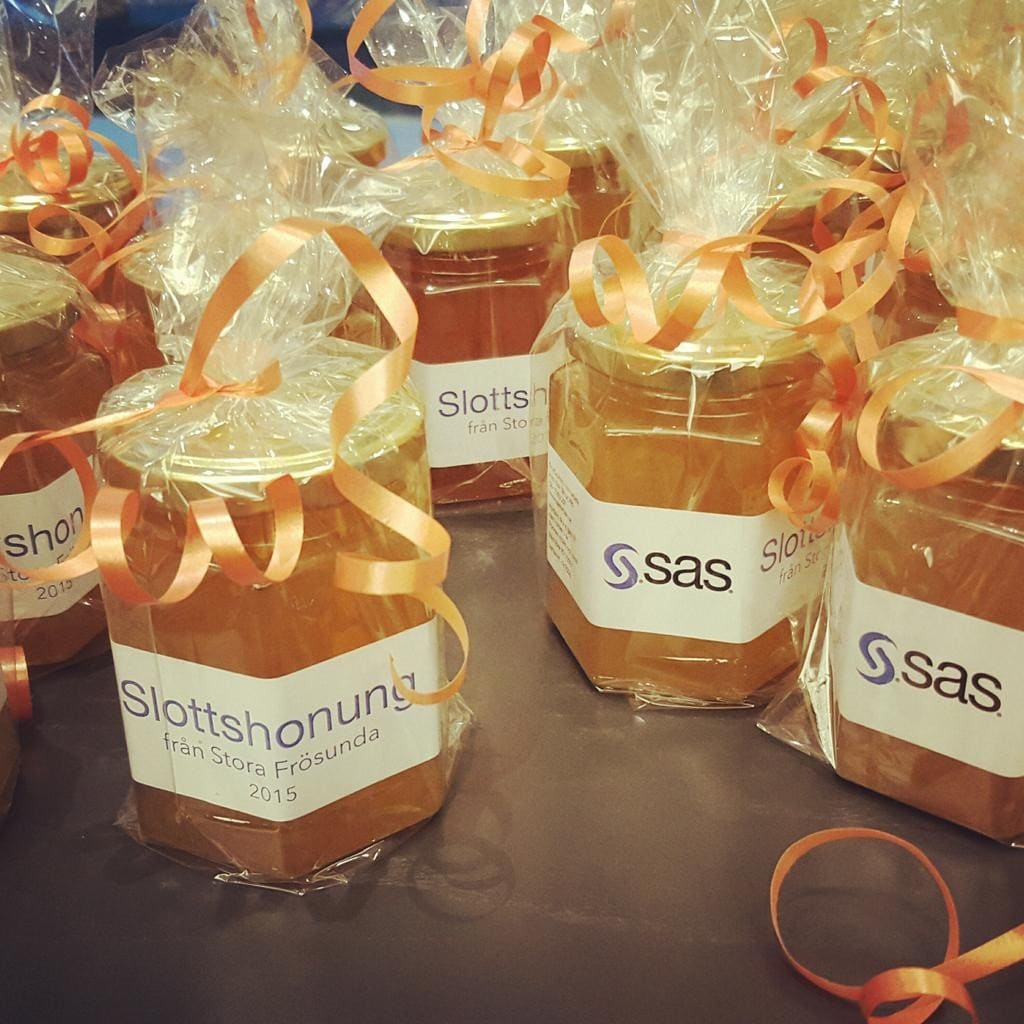 Photos from SAS Forum SE 2015 - 4