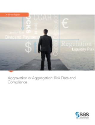 Aggravation or Aggregation: Risk Data and Compliance