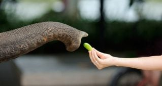 How do you know if you're ready for Hadoop?