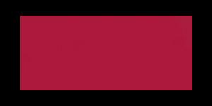 Guangzhou SIE Logo