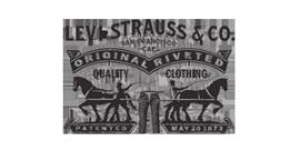 李维斯公司标识