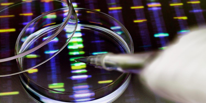 DNA 实验室结果的特写图像