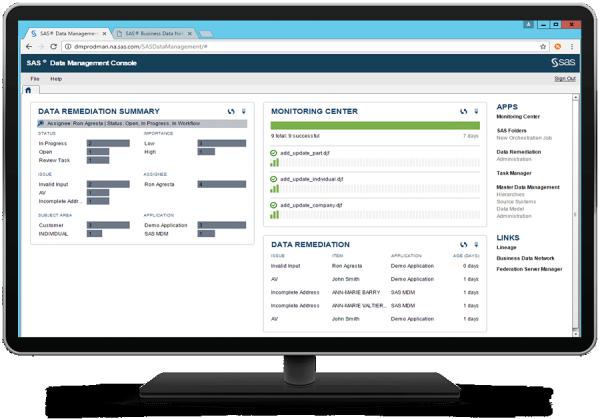 SAS® Data Management - Console data remediation summary