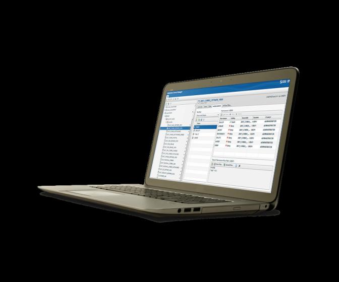 SAS Federation Server shown on laptop