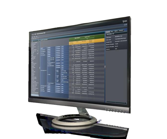 SAS High-Performance Risk shown on desktop monitor