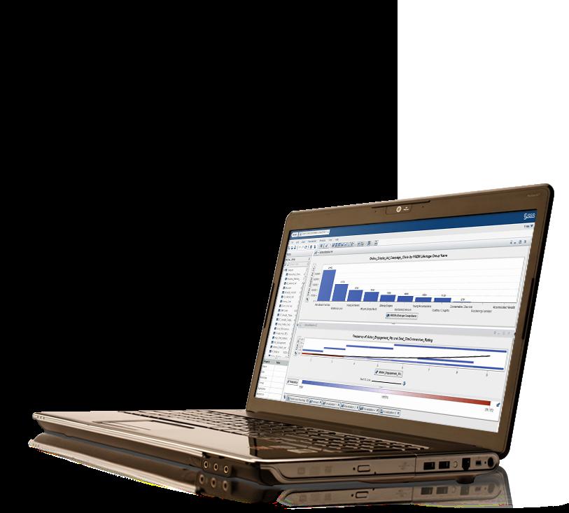 笔记本电脑上显示 SAS 高性能风险